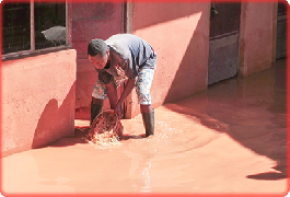 Eight dead, hundreds displaced as flash floods hit Kampala